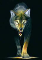 Wolf by FeRnIx