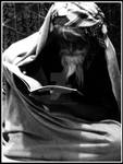 Sufi by scorpion2kpk
