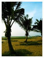 Negombo Beach by scorpion2kpk