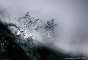 Snowflake by Gallynette