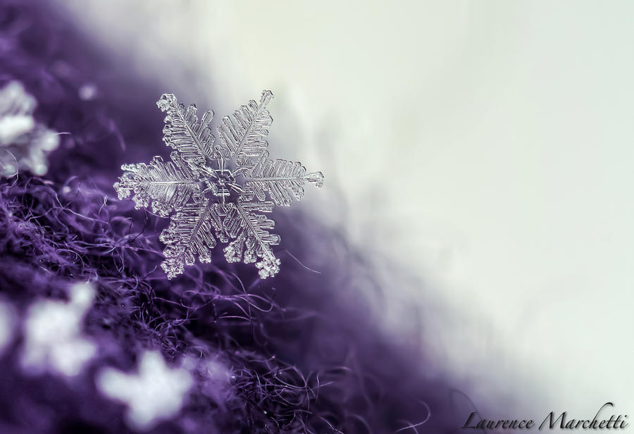Snowflake 4 by Gallynette