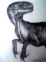Velociraptor by boy140495
