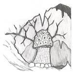 Violet Fungus sketch