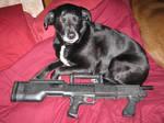 Shotgun Puppy n Bullpup Shotty