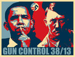 Gun Control and National Socialists
