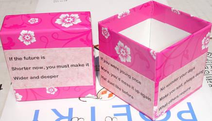 DOAD Haiku Box 3D by Colornote