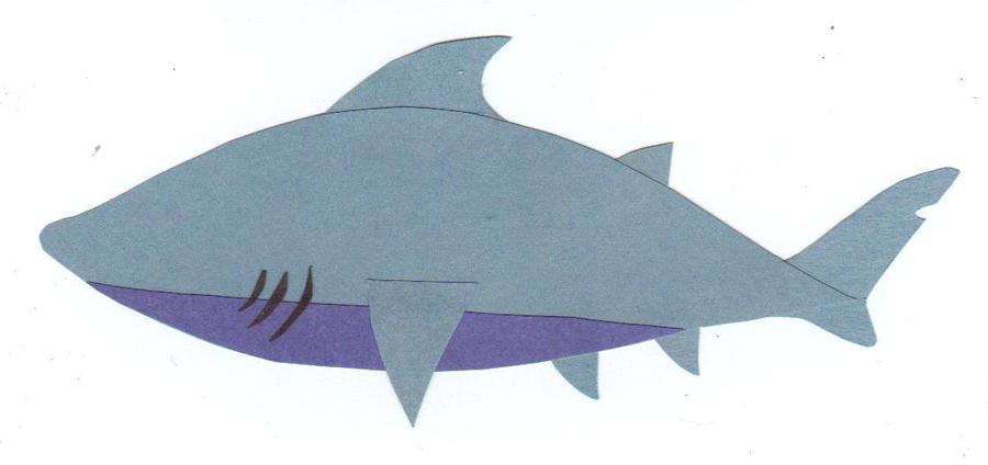 sharkweek paper shark by andilion on  sharkweek 6 2011 paper shark by andilion5356