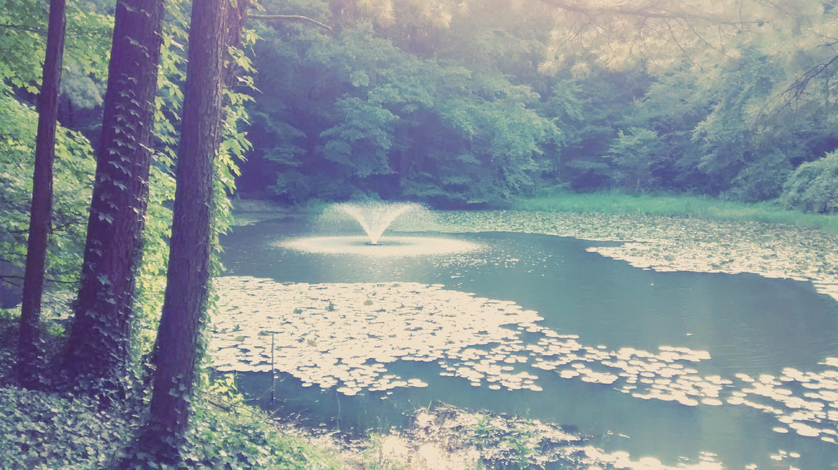 Peaceful Pond by dannis2