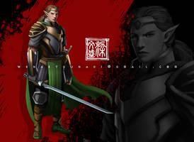 elf warrior by Wenart