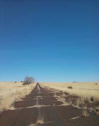 Long Trip Alone