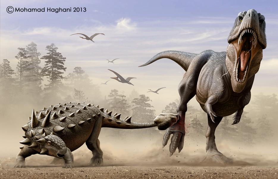 Tyrannosaurus rex VS Euoplocephalus by haghani on DeviantArt