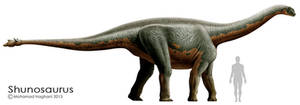 Shunosaurus by haghani
