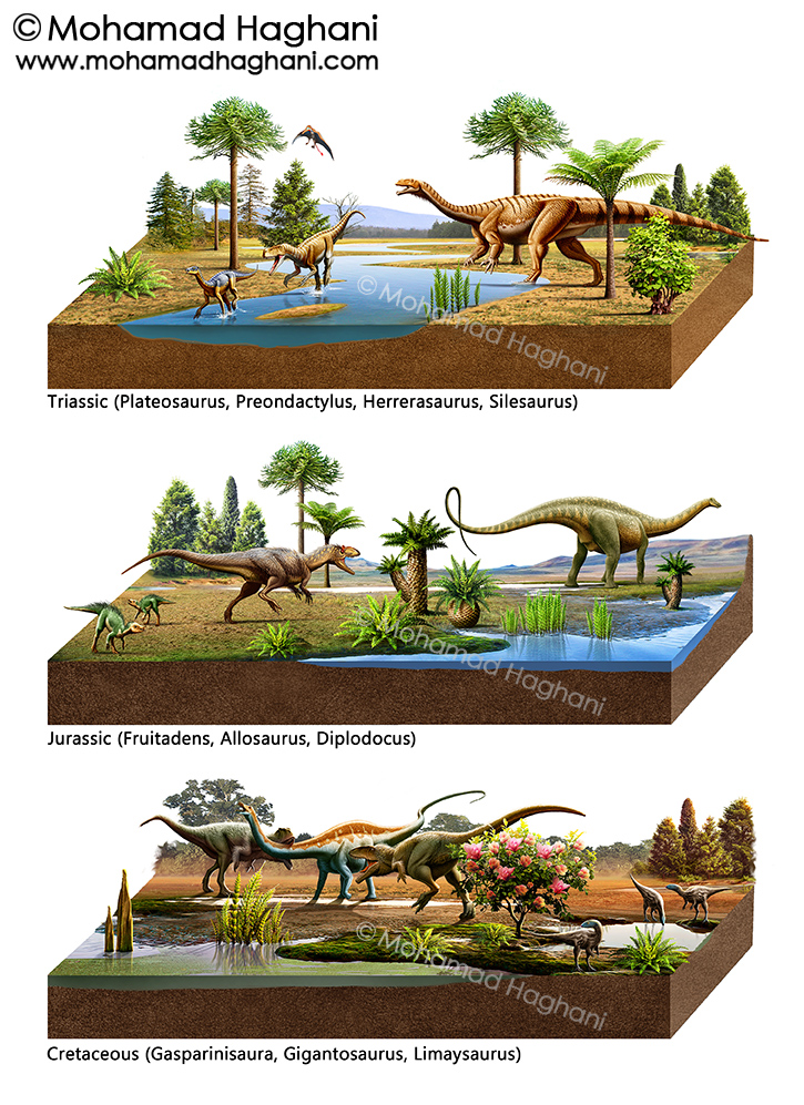 the triassic jurassic The jurassic period began as a large extinction took place at the end of the triassic period, approximately 208-200 ma, and later extended to 144 million years ago, roughly 64 ma to 56 ma.