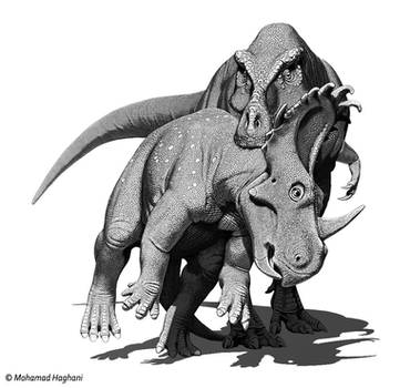Sinoceratops and Zhuchengtyrannus