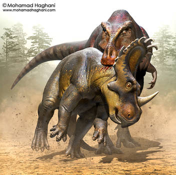 Zhuchengtyrannus Vs Sinoceratops