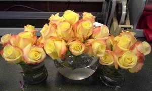 Rose Bowl Arrangements by pippierafrostlin