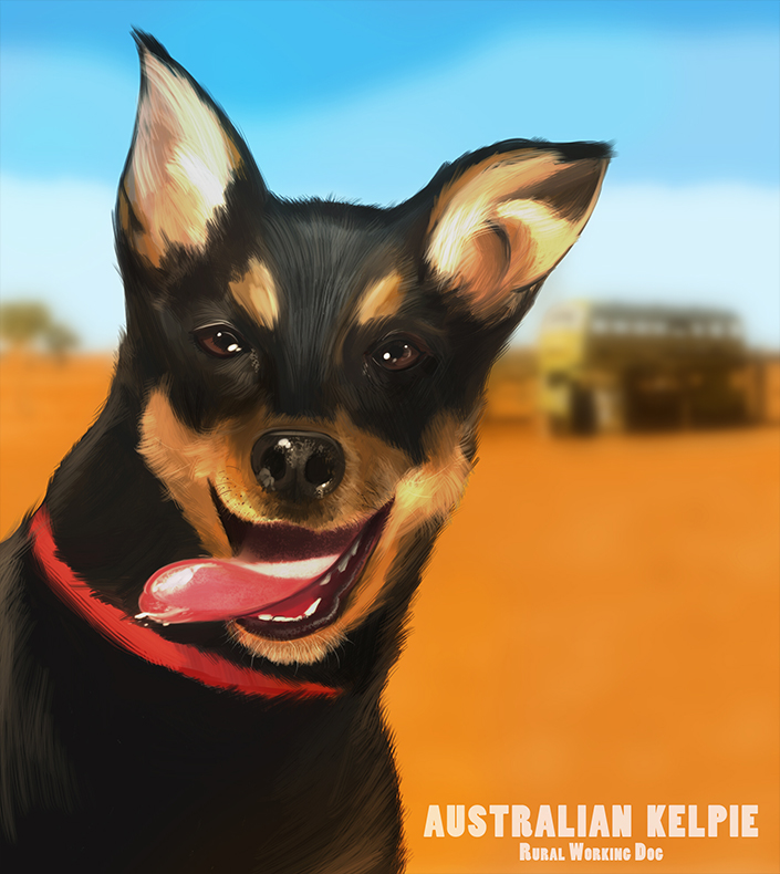 What Colours To Use To Paint A Kelpie Dog