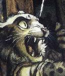 NG Character14 Victim-1---Bobcat by darkspeeds