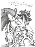 Fate of the Hedgehogs
