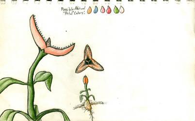 Small Carnivorous Flower by sunwarrior25