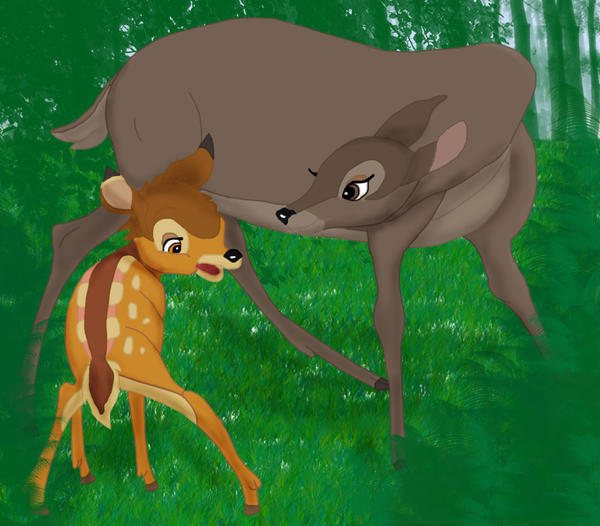 bambi mother wwwimgkidcom the image kid has it