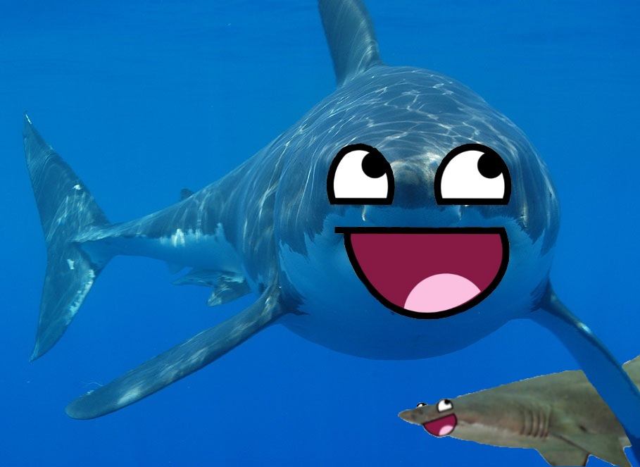 Image result for happy shark
