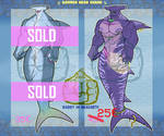 [ CLOSE ] Adopt Bara HammerHead Shark by Ano-Lantern