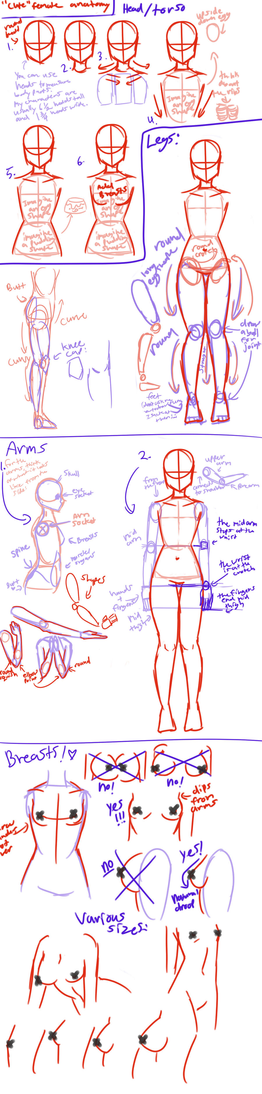 'Cute' female anatomy tutorial by AngelicCarrot