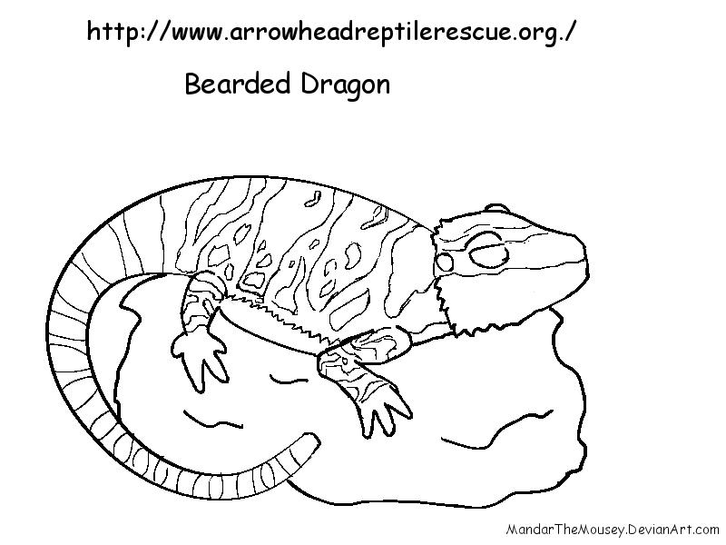 Cebearded Dragon Line By Mandarthemousey On Deviantart
