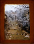 Old winter sighs through me