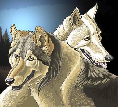 Wolves by DarkAngel613613 by TheWolfPack