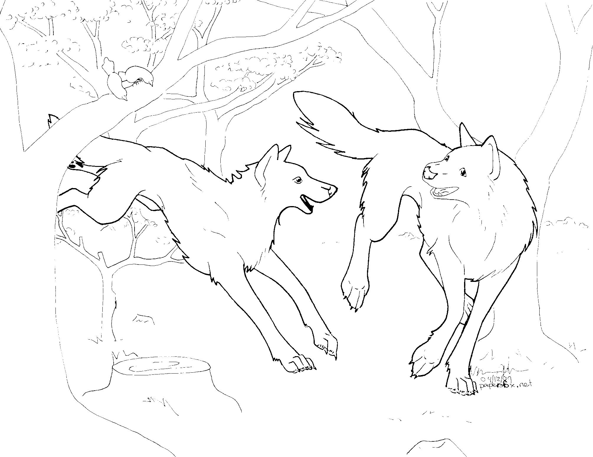 Line Art Quizlet : Poll wie vinden jullie het interessantste quizlet