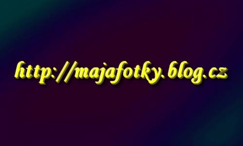 majafotky.blog.cz by Maja-Nuissance