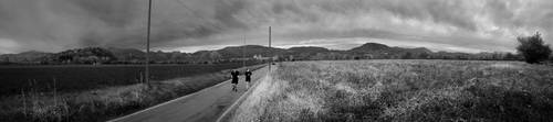 Running in a Gray Country by sket88