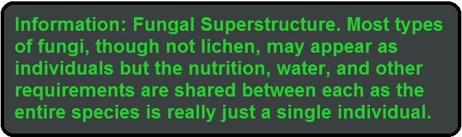 info fungal