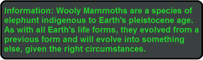 info mammoth