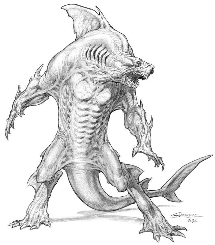 Shark hybrid drawing - photo#43