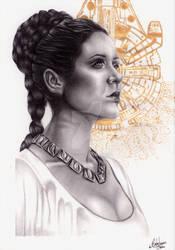 Leia Star Wars by Bruna Celeghim