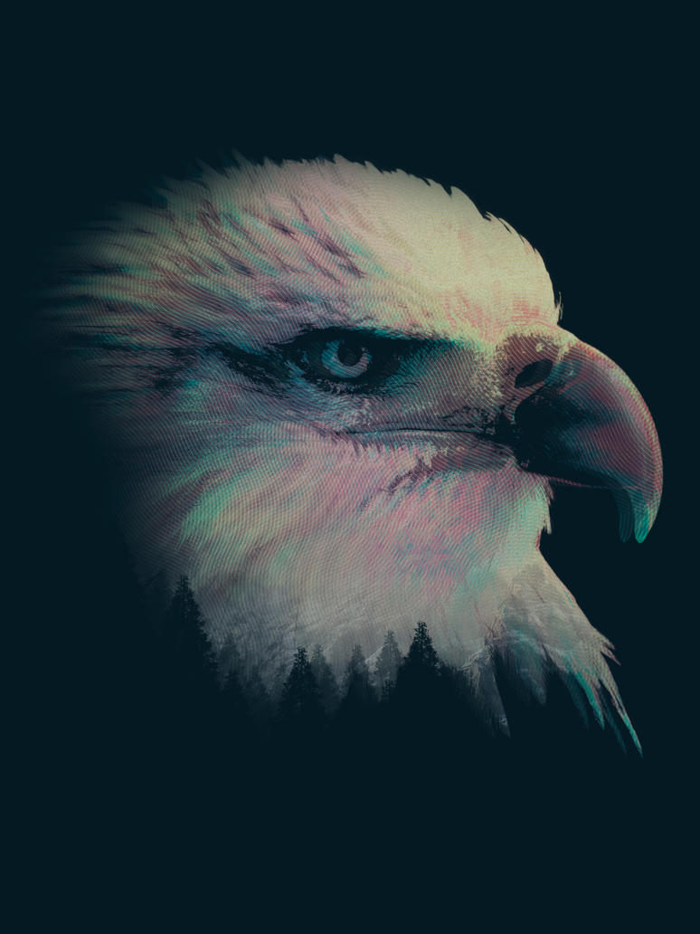 Shifted Eagle by CDixonM
