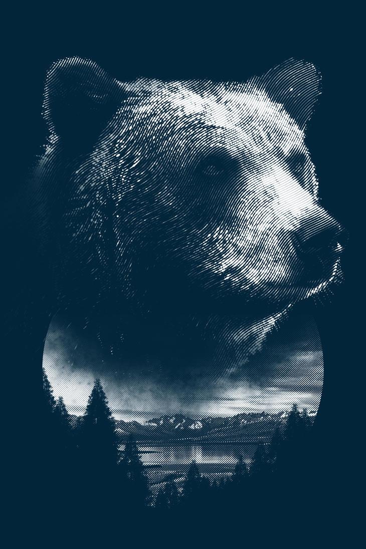 Bear by CDixonM