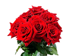 Red RosesPNG Stock