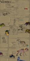 Vernides species ref sheet PL