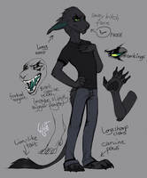 Endy Fursuit Design Read the description