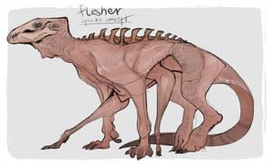 Flesher Species