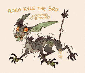 Pedro Kyle the 3rd