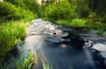 River Toras