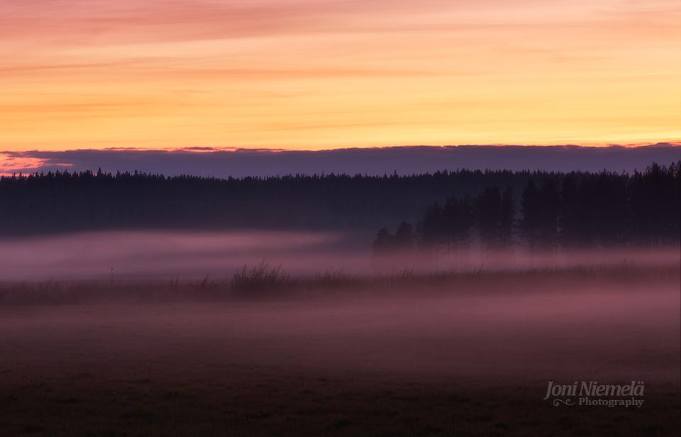 Foggy Fall Evening by JoniNiemela