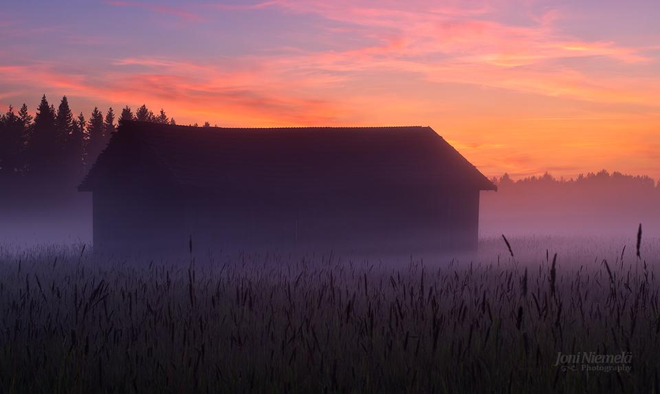 August Mist by Nitrok