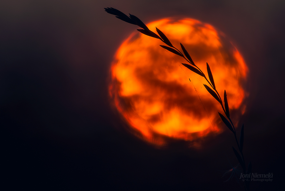 Fireball by Nitrok
