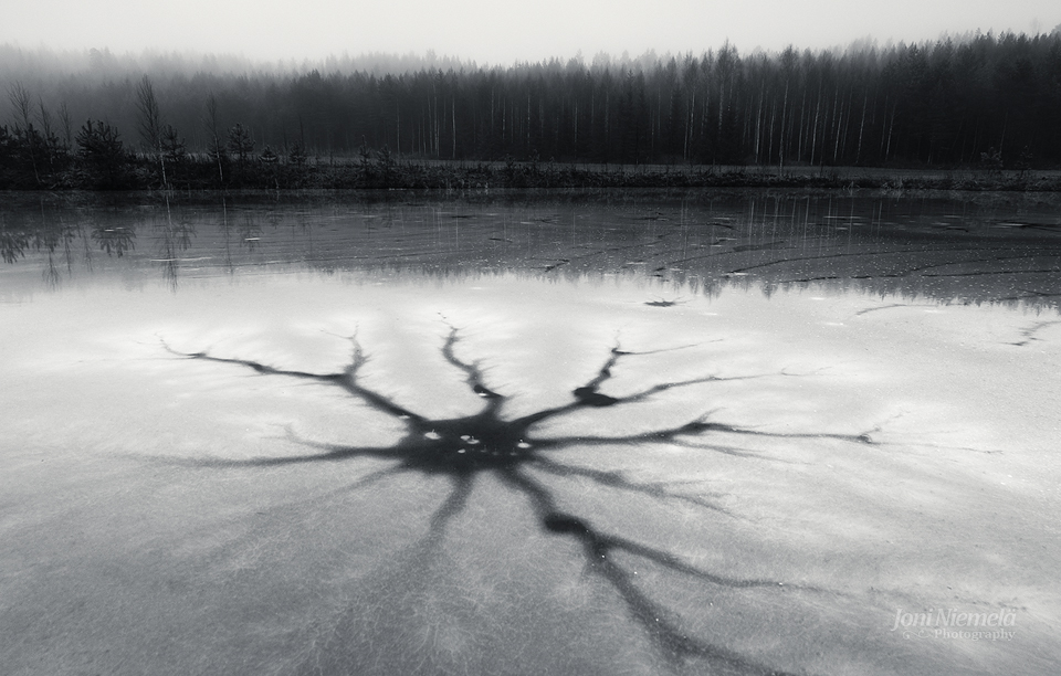 Neuron by JoniNiemela